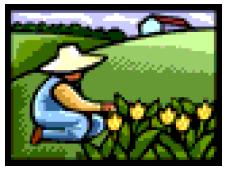 Veg Garden icon